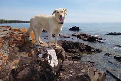 Ceramic Art - Betsy On Big Bay Point by Sandra Updyke