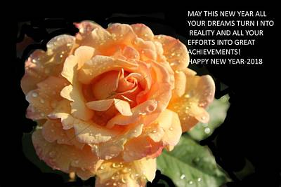 Photograph - New Year Greeting-4 by Anand Swaroop Manchiraju