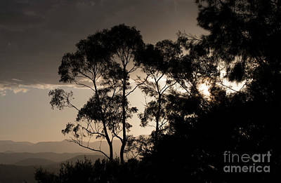 Photograph - New Year Sunset by Angela DeFrias