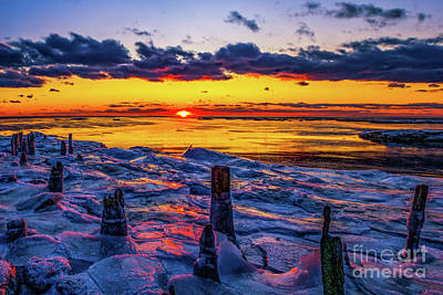 Photograph - New Year Sunset by Nick Zelinsky