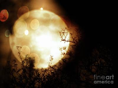 Photograph - New Year Super Moon by Leslie Hunziker