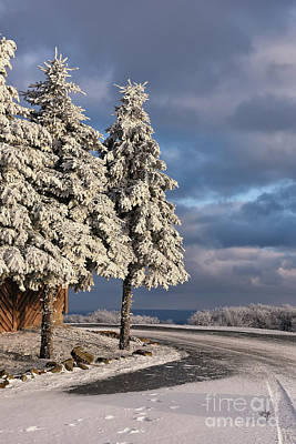 Snowy Roads Photograph - New Year's Day by Lois Bryan