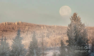 Photograph - New Year's Moon by Brad Allen Fine Art