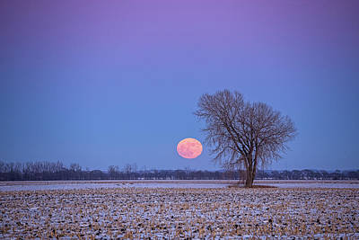 Photograph - New Year's Supermoon by Penny Meyers