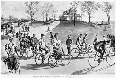 Photograph - New York: Bicycling, 1895 by Granger