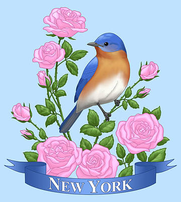 New York Bluebird And Pink Roses Art Print