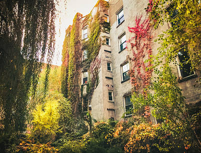 Fall Foliage Photograph - New York City Autumn East Village by Vivienne Gucwa