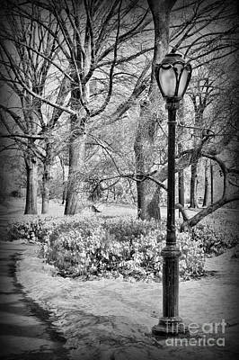 Park Scene Photograph - New York City - Winter - Central Park by Paul Ward