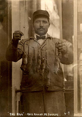 1900s Portraits Photograph - New York, Rat Catcher, Reads The Kill - by Everett