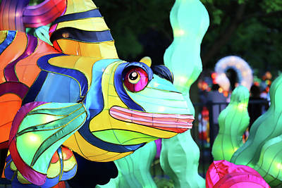 Photograph - New York State Chinese Lantern Festival 35 by David Stasiak
