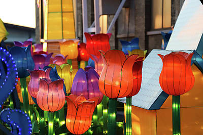 Photograph - New York State Chinese Lantern Festival 37 by David Stasiak