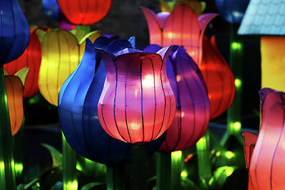 Photograph - New York State Chinese Lantern Festival 38 by David Stasiak