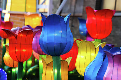 Photograph - New York State Chinese Lantern Festival 39 by David Stasiak
