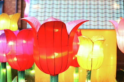 Photograph - New York State Chinese Lantern Festival 40 by David Stasiak
