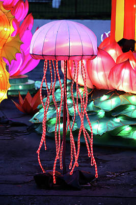 Photograph - New York State Chinese Lantern Festival 43 by David Stasiak