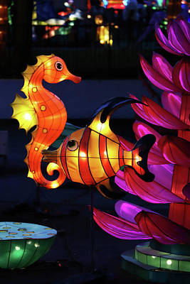 Photograph - New York State Chinese Lantern Festival 45 by David Stasiak