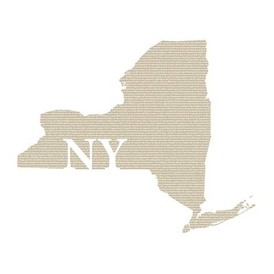 Ny Mixed Media - New York State Map With Text Of Constitution by Design Turnpike