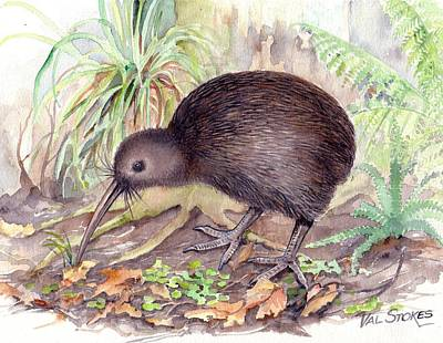 New Zealand Kiwi Original by Val Stokes