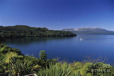 New Zealand, Rotorua Print by Greg Vaughn - Printscapes