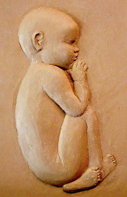 Relief - Newborn by Deborah Dendler