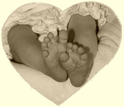 Newborn Feet Art Print