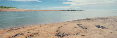 Photograph - Newburgh Seal Beach by Ray Devlin