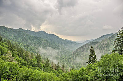 Photograph - Newfound Gap In Great Smoky Mountains National Park by Sue Smith