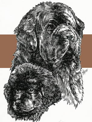 Mixed Media - Newfoundland And Pup by Barbara Keith