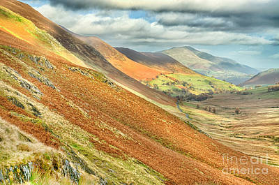 Photograph - Newlands Valley Cumbria by Linsey Williams