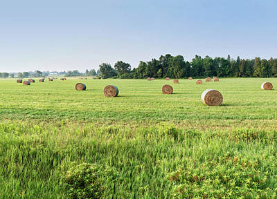 Photograph - Newly Baled Hay by Nick Mares