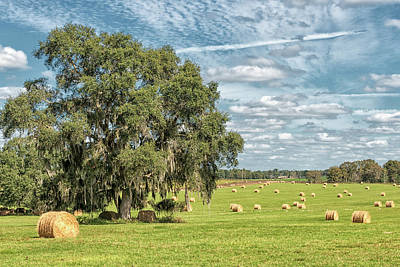Photograph - Newly Baled Hay by Victor Culpepper