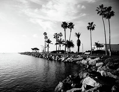 Palm Tree Photograph - Newport Beach Jetty by Paul Velgos