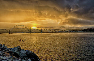 Photograph - Newport Morning by Bill Posner