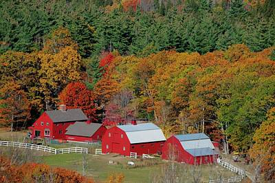 Photograph - Newry Maine by Bob Doucette