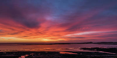 Photograph - Newton Haven Sunrise by David Pringle