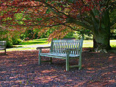 Park Benches Photograph - Next Guest by Gordon Beck