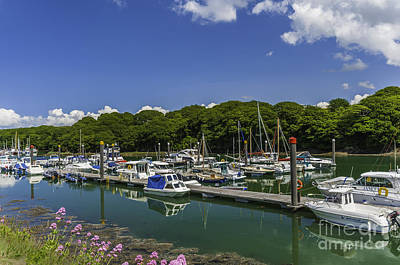 Photograph - Neyland Marina by Steve Purnell