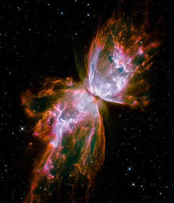 Universe Photograph - Ngc 6302 Hubble 2009 by Space Art Pictures