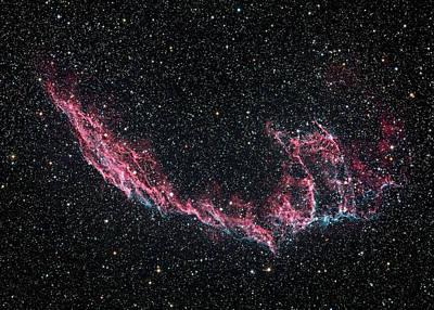 Photograph - Ngc 6995 - Veil Nebula by Tony Sarra