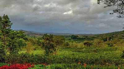 Photograph - Ngorongoro Scenery In Tanzania by Marilyn Burton