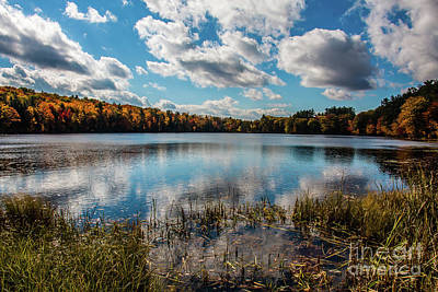 Photograph - Nh Scenery by Mim White
