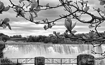 White And Black Waterfalls Photograph - Niagara American Falls Spring by Charline Xia