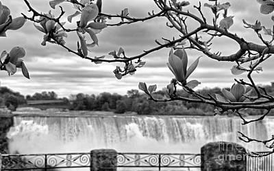 Niagara American Falls Spring Art Print