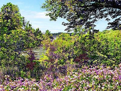 Photograph - Niagara Falls Ny - Wildflowers On Three Sisters Islands by Susan Savad