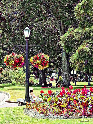 Photograph - Niagara Falls On - Queen Victoria Park by Susan Savad