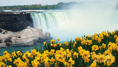 Niagara Falls Spring Flowers And Melting Ice Art Print