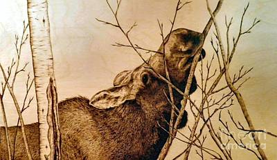 Pyrography - Nibbling The Willow by Adam Owen