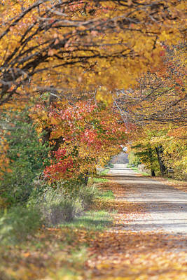 Photograph - Nice Autumn Back Road  by John McGraw