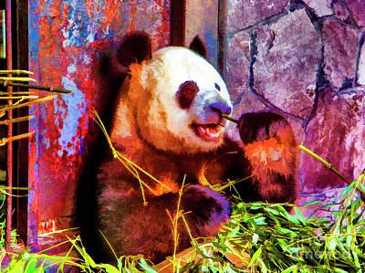 Photograph - Nice Panda by Rick Bragan