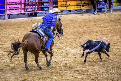 Photograph - Nice Roping by Rene Triay Photography